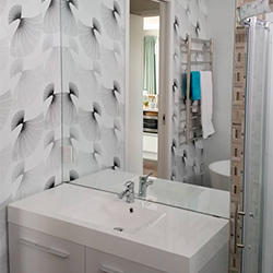 Frameless Glass Showers and Bathroom Mirrors
