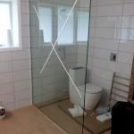 Frameless Glass Shower - Wellington